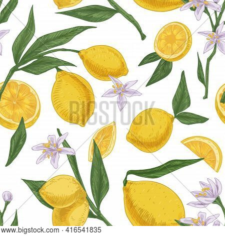 Seamless Citric Pattern With Citrus Fruits, Flowers And Leaves Of Blooming Lemon Tree On White Repea