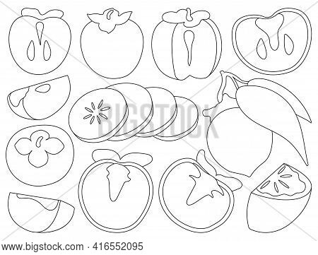 Persimmon Vector Illustration On White Background. Isolated Outline Set Icon Fruit. Vector Outline S