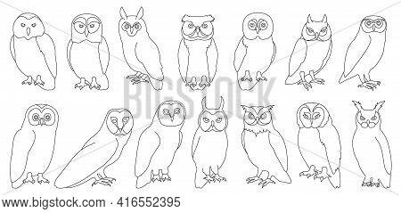 Owl Bird Outline Vector Set Illustration Of Icon. .vector Set Icon Of Animal Owl. Isolated Outline C