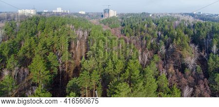 Hilly Terrain Overgrown With Mixed Coniferous And Deciduous Forest In Early Spring With Multistory B