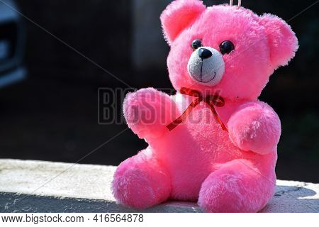 Stock Photo Of Beautiful Cute Furry Pink Color Teddy Bear Sitting On Wall Under Bright Sunlight On B