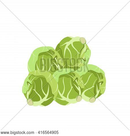 Brussels Sprouts Icon. Food For A Healthy Diet. Natural Product Made From Green Vegetables, Suitable