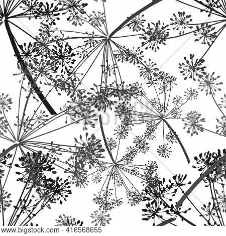 The Gray Vector Seamless Pattern Of Dill Seeds Is On A White Background