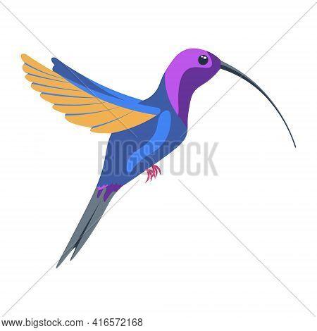 A Bright Multicolored Hummingbird, A Bird Painted In Several Colors Blue Orange Purple. Vector Illus