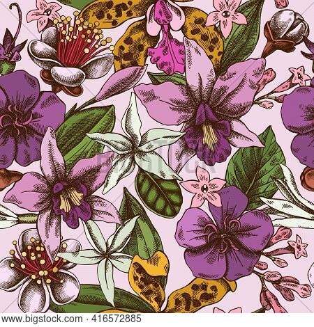 Seamless Pattern With Hand Drawn Colored Laelia, Feijoa Flowers, Glory Bush, Papilio Torquatus, Cinc