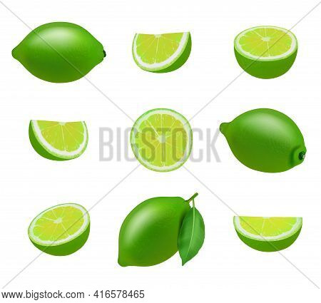 Lime. Realistic Fresh Sliced Fruits With Leaves Decent Vector Limes Collection