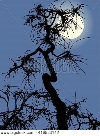 Illustration Of Silhouette Crooked Old Dry Tree In Moonlit Night