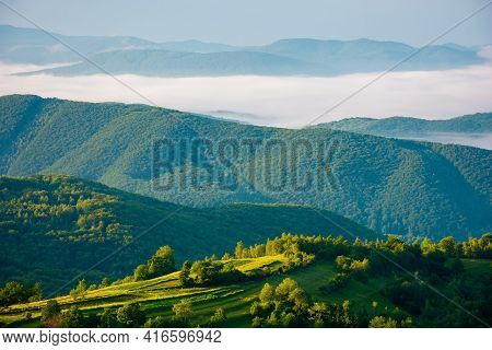 Rural Landscape In Summer At Sunrise. Hills Rolling In To The Distant Valley In Morning Mist. Green