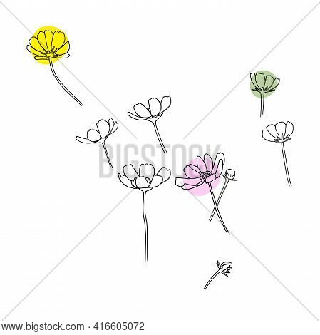 Abstract Line Cosmos Flowers. Botanical Contour Drawing. Organic Shapes Backgroud. Modern Minimal Ar