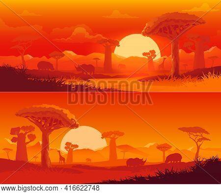 African Savanna Nature Vector Landscape At Sunset. Safari Animal, Dusk Orange Sky, Sun And Cloud, Sa