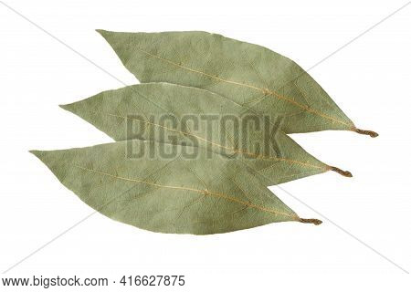 Spices Bay Leaves Isolated On White Background. Four Bay Leaves Isolated On White From Above.