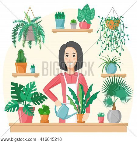 Woman Watering And Planting Houseplants. Green Garden And Flowers Pots At Home. Gardening Hobby. Tak