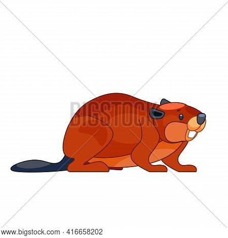 Cute Cartoon Beaver In Flat Style Vector Illustration Isolated On White Background