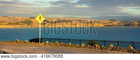 Hot Summer Dry Hills Of Napier New Zealand.