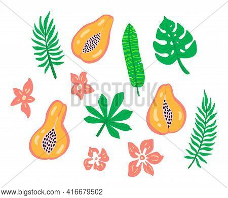 Fruits Set Of Papaya With Flowers, Tropic Leaves Isolated On White Background. Tropical Logo Papaya