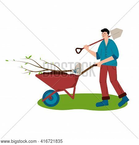 A Young Man Is Rolling A Tree For Planting In A Wheelbarrow. The Man Carries A Shovel On His Shoulde