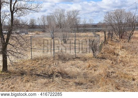 A Former Ignored Baseball Field Consists Of A Backstop, Long Grass, And A Tree In The Infield.