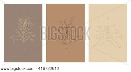 Set Of Three Botanical Drawings In Warm Beige And Brown Colors. Wall Art Botanical Poster. Abstract