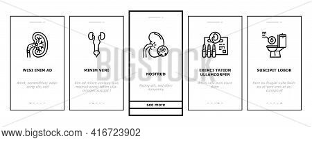 Nephritis Kidneys Onboarding Mobile App Page Screen Vector. Kidneys Stones And Infection, Cancer And
