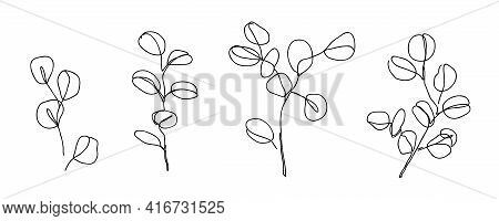 Set Of Eucalyptus Branches In Modern Single Line Art Style. Continuous Line Drawing, Aesthetic Conto