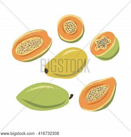 Papaya. Set Of Hand Drawn Papaya. Fresh Organic Food. Vector Illustration With Sketch Fruit