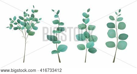 Eucalyptus Leaves In Set Of 4 Branches. Eucalyptus Silver Greenery Set, Leaves And Branches For Deco