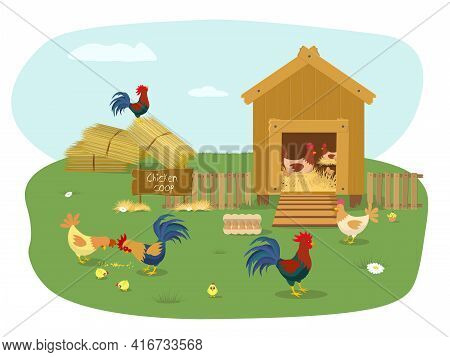 Farm Animals. Chicken Coop With Many Chicks. Chicken Vector Cartoon Chick Character Hen And Rooster