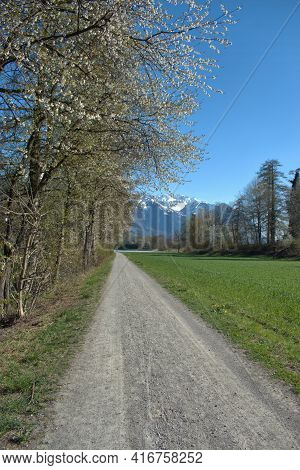 Beautiful Spring Time Scenery From Vaduz In Liechtenstein 4.4.2021