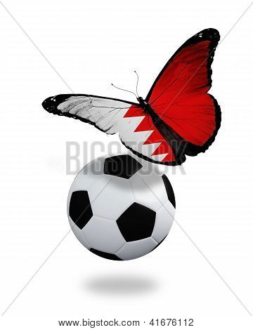 Concept - Butterfly With Bahraini Flag Flying Near The Ball, Like Football Team Playing