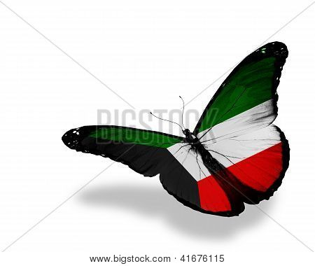 Kuwaiti Flag Butterfly Flying, Isolated On White Background