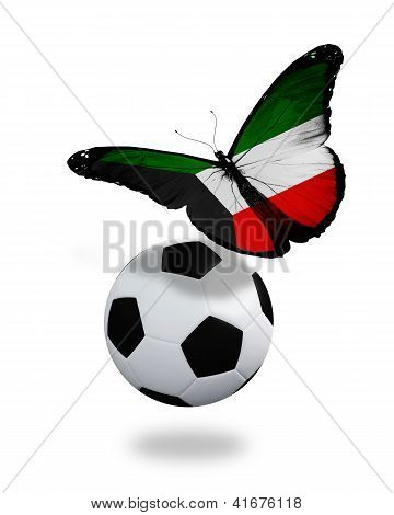 Concept - Butterfly With Kuwaiti Flag Flying Near The Ball, Like Football Team Playing