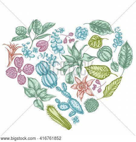 Heart Floral Design With Pastel Ficus, Iresine, Kalanchoe, Calathea, Guzmania, Cactus Stock Illustra