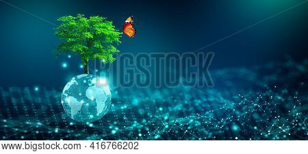Tree With Butterfly Growing On Crystal Globe. Digital Convergence And And Technology Convergence. Bl