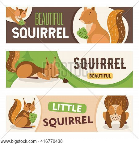 Creative Banner Designs With Cute Cartoon Squirrel Character. Little Happy Orange Mammal With Nut Sm