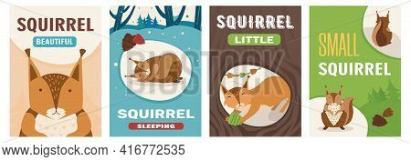 Creative Poster Collection With Cute Little Cartoon Squirrel Character. Vivid Brochures With Mammal