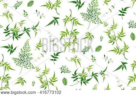 Vector Watercolor Style Seamless Greenery Leaf Pattern. Tropical Leaves, Jasmine Vine, Different Fre