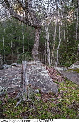 Rocky Terrain With Lichen Covered Boulders To Climb Over And A Cut Tree Along The Trail Going Into T