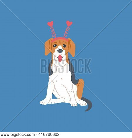 Dog Beagle Breed, Cute Pet Animal, Purebred Puppy With Brown And Black Spots.