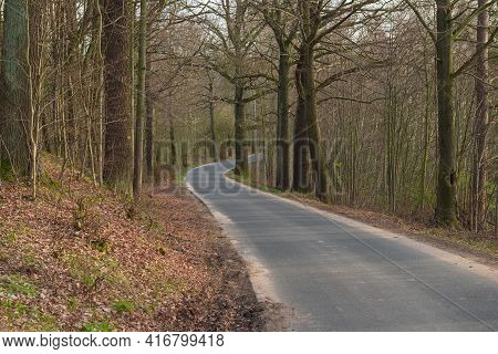 Asphalt, Narrow Provincial Road. The Roadside And The Roadside Ditch Are Covered With Green Grass. I