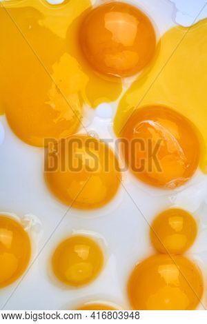 Vertical Shot Egg Yolks On White Background.