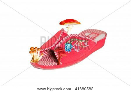 Closeup Of Slippers With Mushrooms