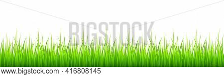 Green Grass Border Isolated On White Background. Lawn Or Meadow Natural Texture. Springtime Theme. V