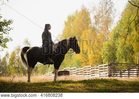 A Young Girl On Horseback Came Out Of The Woods To The Paddock On The Farm And Stopped