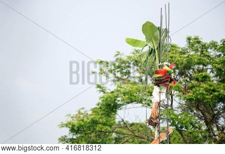 Close Up Hanking Banana Tree, Sugar Tree And Lucky Rattan With First Steel Of Construction In Thai T
