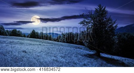 Mountain Landscape With Pasture At Night. Beech Trees On The Hill In Full Moon Light. Beautiful Coun