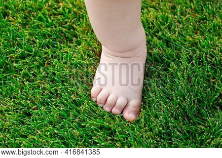 Baby Feet On The Green Grass. Feet Of Little Kid Staying On Green Grass Outdoors. Kids Bare Legs Sta