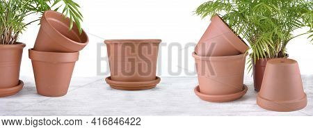 Terra Cotta Flower Pots On A Table With Green House Plant On White Background