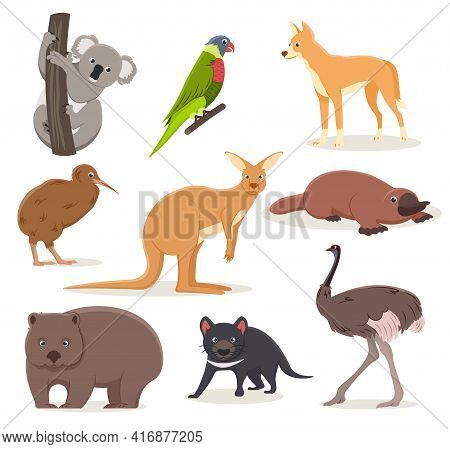 Set Of Funny Cartoon Australian Animals - Emu, Ostrich, Koala On A Branch, Tasmanian Devil, Dingo Do