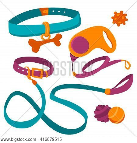 Collar For Pets. Buckle Leash For Dogs And Stylish Collar With Underwire. Fashionable Pet Accessorie