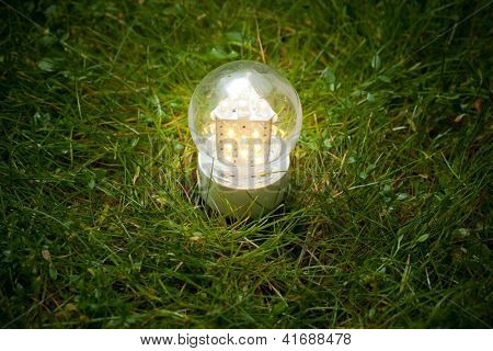 led lamp on the green grass